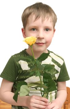 Free Boy With A Rose Stock Photo - 4511650
