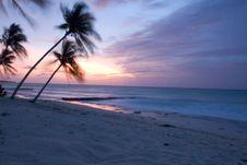 Free Sunset Royalty Free Stock Image - 4514106