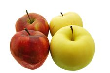 Free Apples Stock Photos - 4515293
