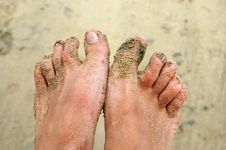 Free Sandy Feet Stock Photography - 4515722