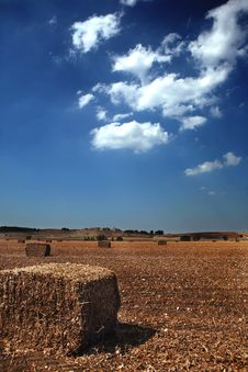 Free Straw On Farmland With Blue Cloudy Sky Stock Photo - 4518470