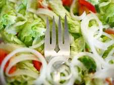 Free Healthy Salad Royalty Free Stock Images - 4519329