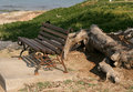 Free Bench Beside A Tree Stock Photo - 4525870