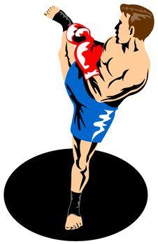 Free Kick Boxer On White Stock Photography - 4520622