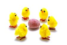 Free Easter Chicks And Egg Stock Image - 4523351