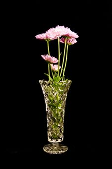 Free Pink Flowers In Crystal Vase Stock Images - 4524124