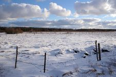 Free Winter Field Royalty Free Stock Image - 4524196
