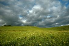 Free Grassland Stock Image - 4524951