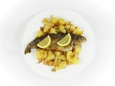 Free Trout Fish, Potato And Citron Plate Stock Image - 4525011