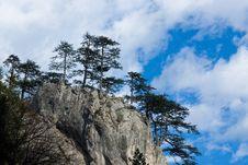 Free Rock Cliff Trees Royalty Free Stock Photos - 4527108