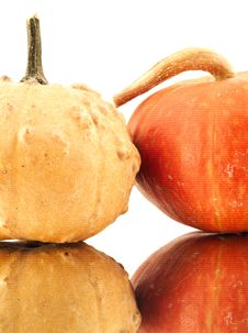 Free Pumpkins Royalty Free Stock Photography - 4528367