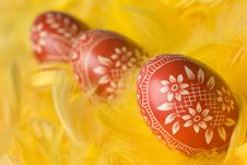 Free Easter Eggs. Royalty Free Stock Photography - 4528877