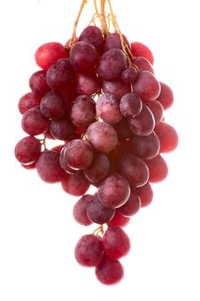 Free Bunch Of Grapes Stock Images - 4529104