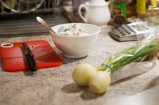 White Cheese And Onion Royalty Free Stock Image