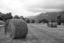 Free Haystacks Under An Overcast Sky Royalty Free Stock Photos - 4532118