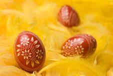 Free Easter Egg. Royalty Free Stock Photos - 4533338