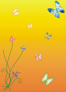 Free Butterfly Royalty Free Stock Photos - 4533968