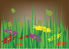 Free Grass And Flowers Stock Photography - 4534182