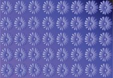 Free Camomile Background Stock Image - 4534921