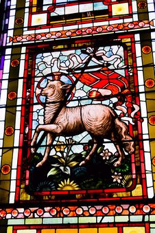 Stained Glass Lamb Royalty Free Stock Photos