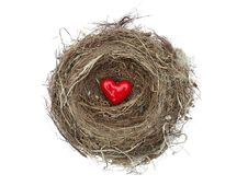 Free Red Heart In Bird S Nest Royalty Free Stock Image - 4535836