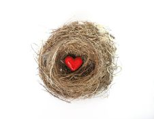 Free Red Heart In Bird S Nest Royalty Free Stock Photos - 4536438
