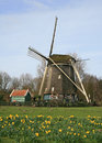 Free The Windmill In Dutch Countryside Royalty Free Stock Photo - 4544125