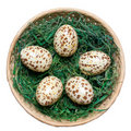 Free Basket With Eggs. Stock Photo - 4547040