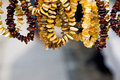 Free Necklaces From Amber Stock Photography - 4547222