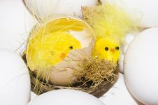 Free Easter Chickens Stock Images - 4540174