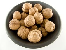 Free Walnuts Stock Images - 4541664