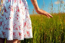 Free Woman Hand In Field Royalty Free Stock Image - 4543096