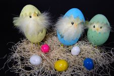 Free Easter Chix Royalty Free Stock Image - 4543186