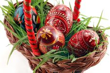 Free Colored Easter Eggs In Grass Royalty Free Stock Photo - 4544235