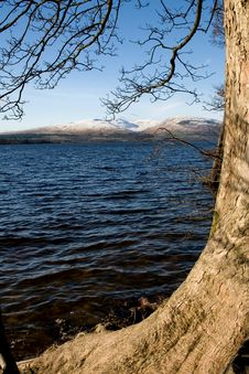 Free Loch Lomond Royalty Free Stock Images - 4544529