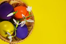 Free Easter Basket With Snowdrops And Eggs Royalty Free Stock Image - 4545856