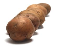 Free Row Of Organic Raw Potatoes Royalty Free Stock Images - 4546169