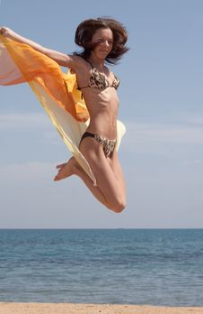 Free The Girl Jumps On Seacoast Royalty Free Stock Image - 4546896