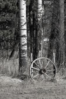Abandoned Wagon Wheel Stock Photography