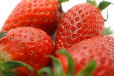 Free Strawberries Royalty Free Stock Photos - 4548298