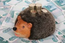 Hedgehog-coin Box Stock Photo
