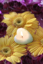 Free Candle On Flowers Stock Images - 4554144