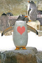 Free Penguin In Love. Royalty Free Stock Photo - 4555505