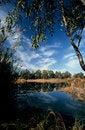 Free Lake At Lymbia Stock Photography - 4557172
