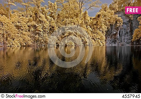 Free Infrared Photo – Lake, Rock, And Tree In The Par Royalty Free Stock Photo - 4557945