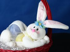 Rabbit Standing In Basket Royalty Free Stock Images
