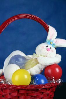 Rabbit Standing In Basket Stock Photo