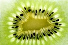Free Kiwi Fruit Slice Stock Images - 4551324