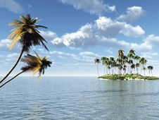 Free Palm Island Stock Images - 4553304