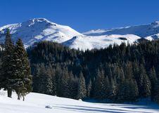 Free Bucegi Mountains Stock Photo - 4553790